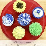 A Review: Wilton Course 1 – Part I