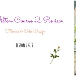 Review: Wilton Course 2 – Lessons 2 & 3