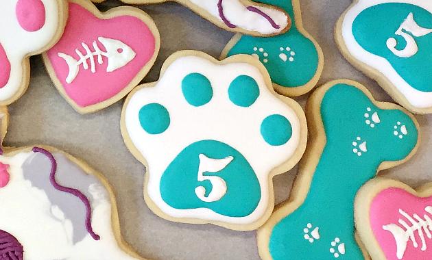 Royal Icing Paw Print Cookies